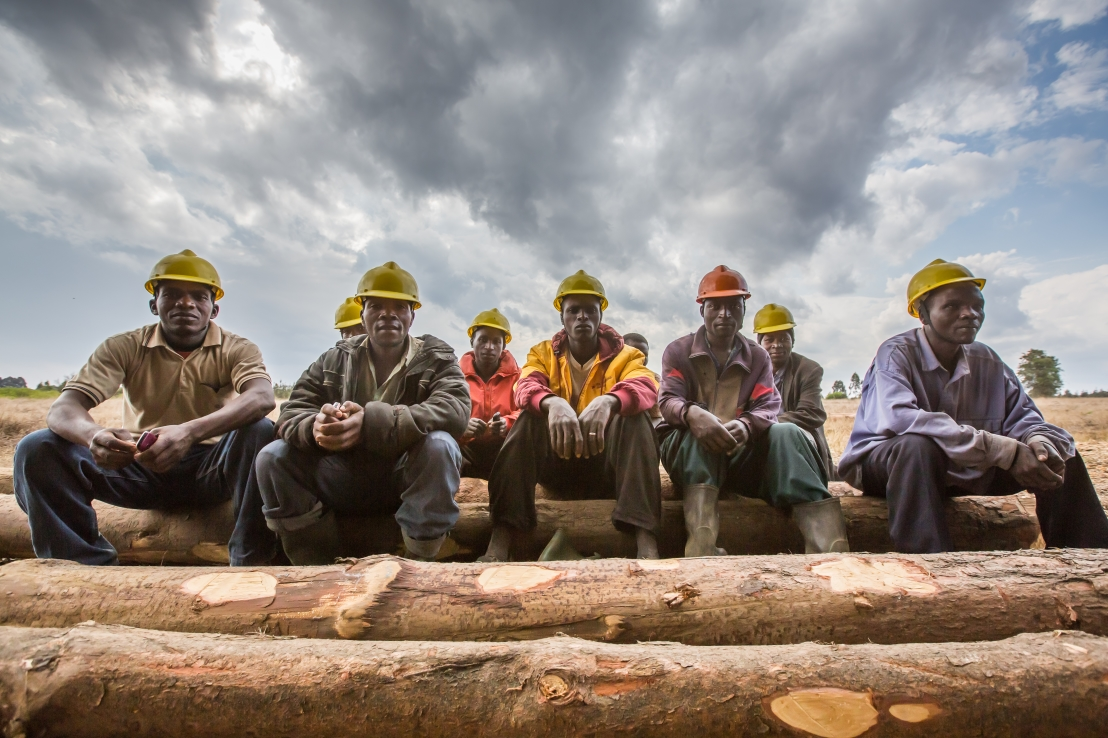 A group of men sitting on long tree logs in Tanzania