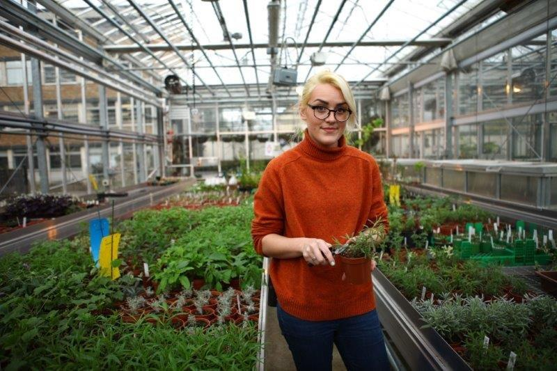 Woman surrounded by plants in a greenhouse - plant science